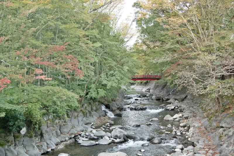 桂川に桂橋
