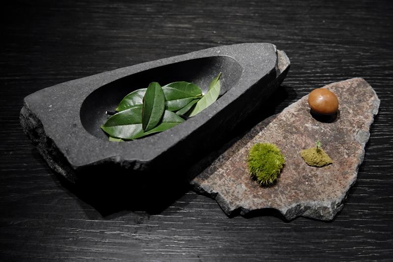 苔 緑 茸