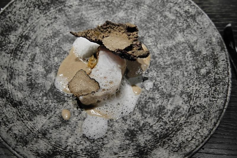 クエ 発酵キノコ 螺貝